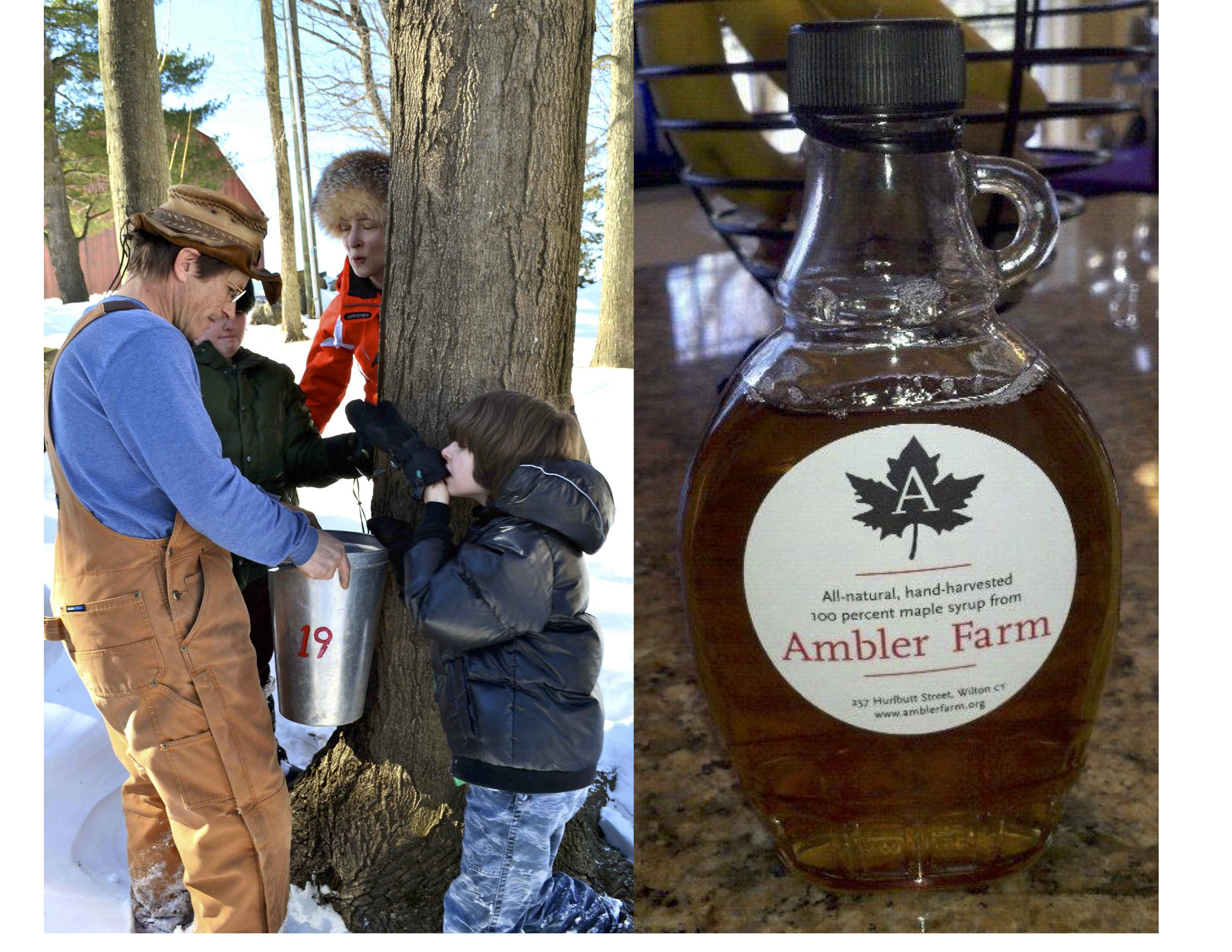 4ddb49e4dcb Learn the science and history of maple syruping by being a hands-on part of  the process. There will be two training sessions offered  only ONE session  is ...