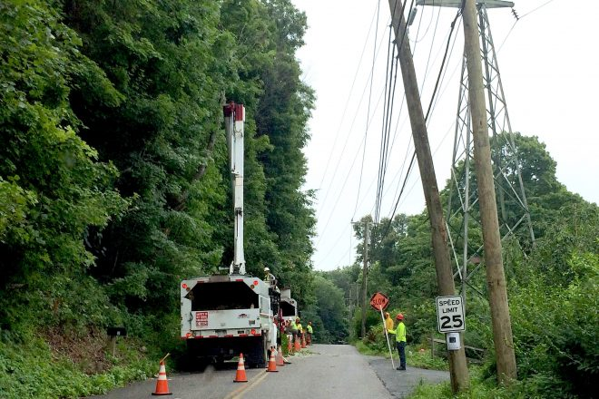 Eversource Addressing 'Heightened Concern' of Dead, Hazardous Trees in Wilton and Across CT