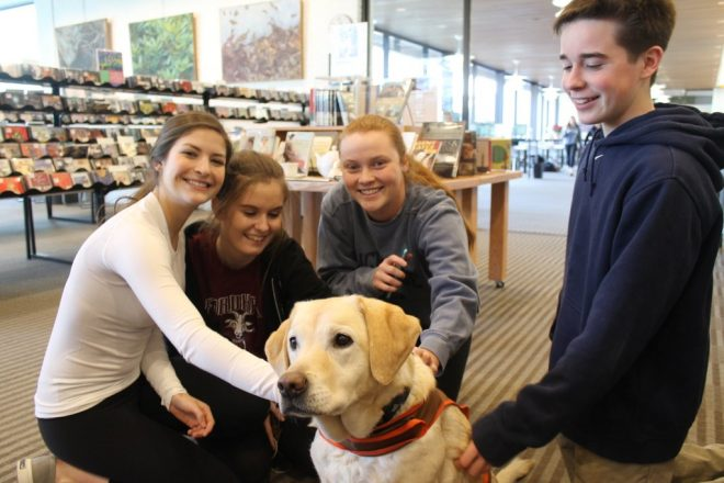 Wilton Library Extends Hours for Midterm Exam Studying and Brings in Therapy Dogs