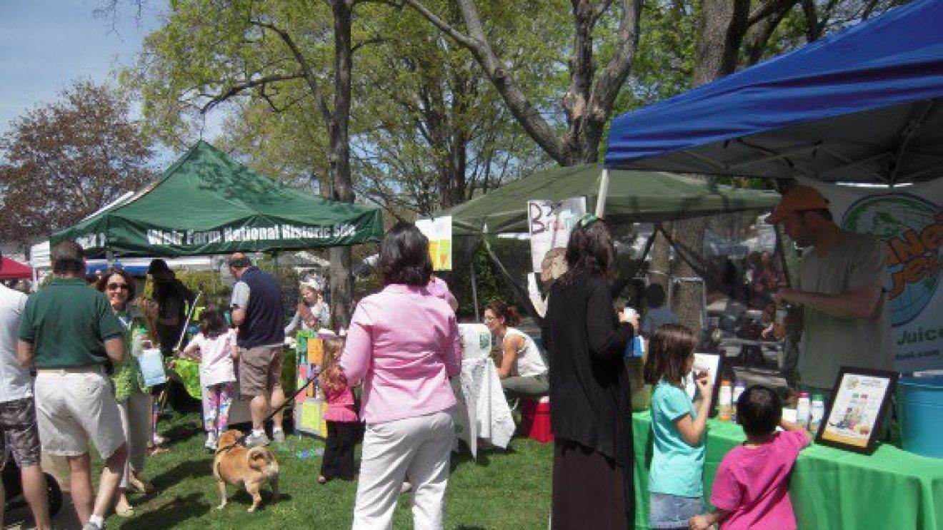 Sunday's WGG Festival:  Fun Activities–But Also Important Community Action