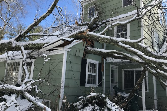 Schools Closed for Friday, as Wilton Tries to Clean Up Post-Storm [PHOTOS]