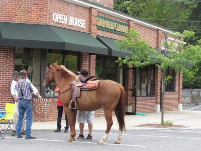 The first time a horse visits Open House Gift Shop