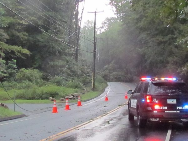 tree down ridgefield Rd. Wilton Center power out_6757