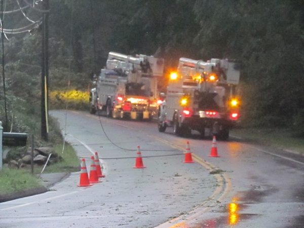 tree down ridgefield Rd. Wilton Center power out_6829