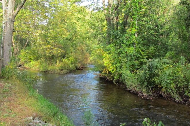 Trout Unlimited:  Bringing New Life to Norwalk River with Upcoming Reconstruction Project