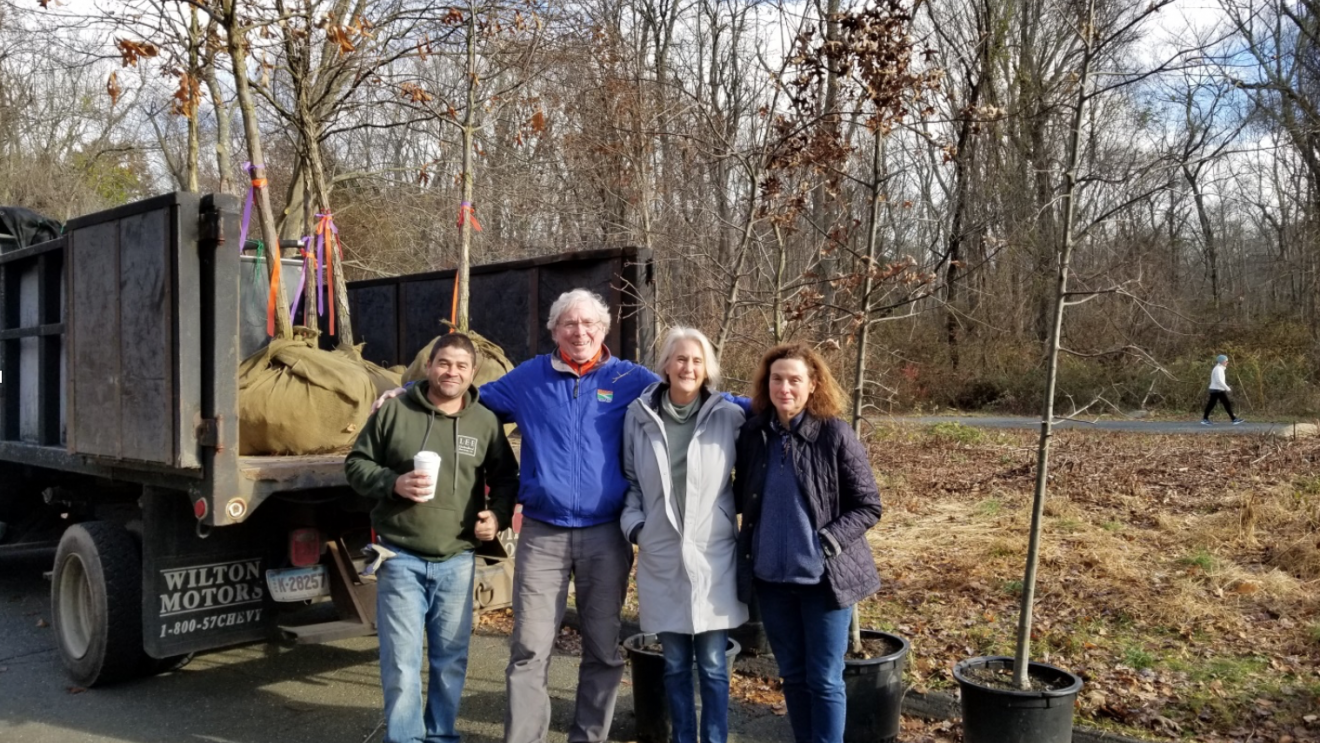New Tree Grove Planted on Norwalk River Valley Trail
