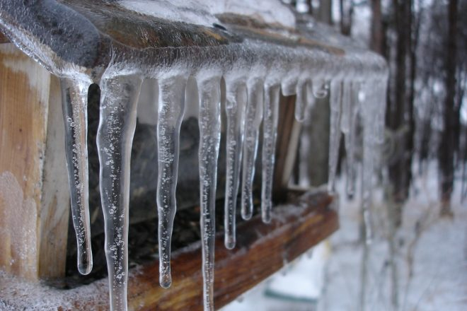 NEWS ALERT:  Town and State Prep for Weekend Snow, Brutal Cold and Icy Tree Limbs