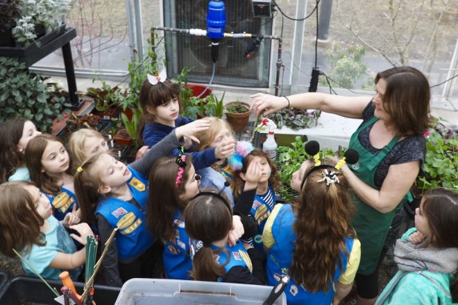 Wilton Garden Club Plants Seeds of Gardening Love with Daisy Troop 1st Graders