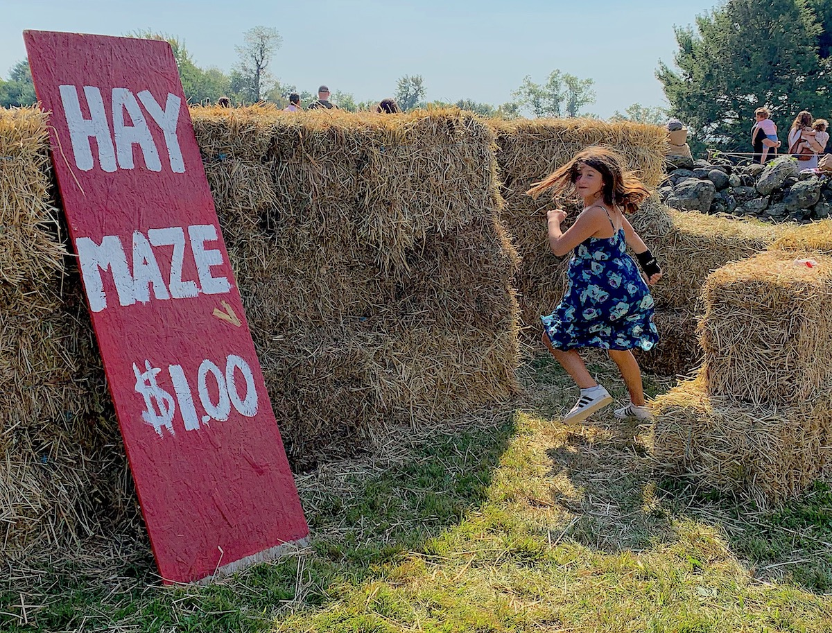 Ambler Farm Day 2019 in PHOTOS
